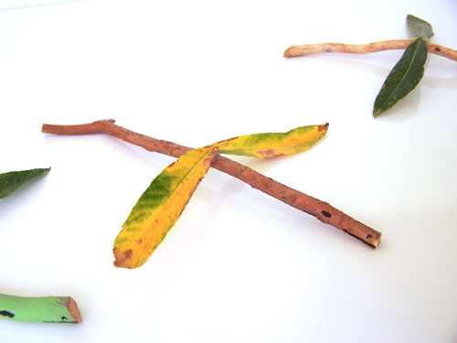 Twig and leaf dragon nature craft www.createinthechaos.com