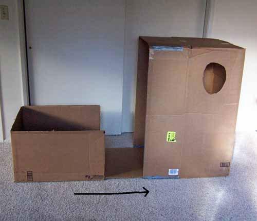 cardboard-ships